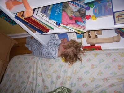 Sleep_in_bookshelf
